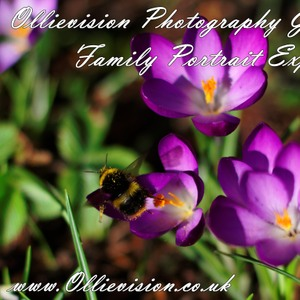 photography gift vouchers, photographers Yorkshire, gifts for men, portrait makeover gifts