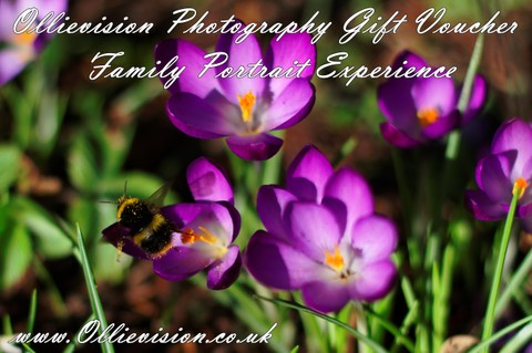 wedding gift ideas, photography gift vouchers, urgent need a wedding present, Yorkshire family photo shoots, photography gift ideas Yorkshire