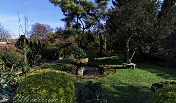 Leeds commercial photographer for charity fund raising, York Gate, Adel, Perennial, scenic gardens in England